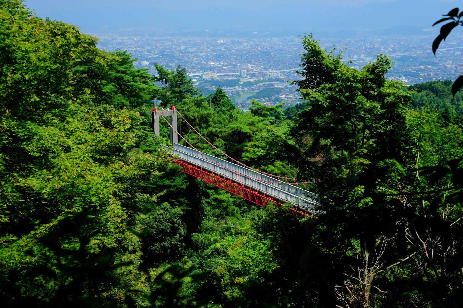 油山市民の森・吊り橋(2009)の画像