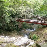 油山市民の森・水の森(撮影年不明)の画像
