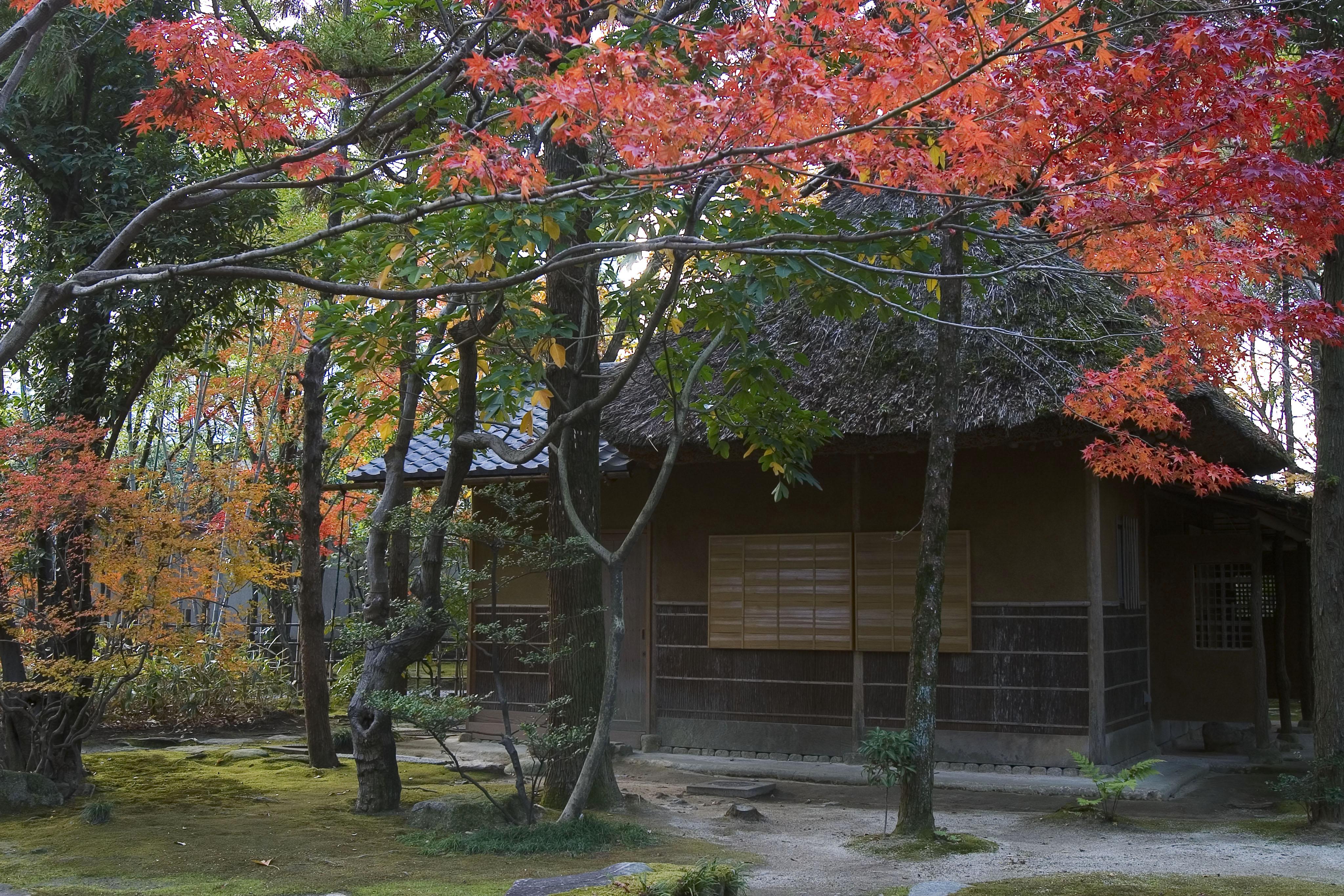 友泉亭公園(2005)の画像