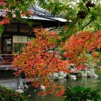 友泉亭公園(2010)の画像