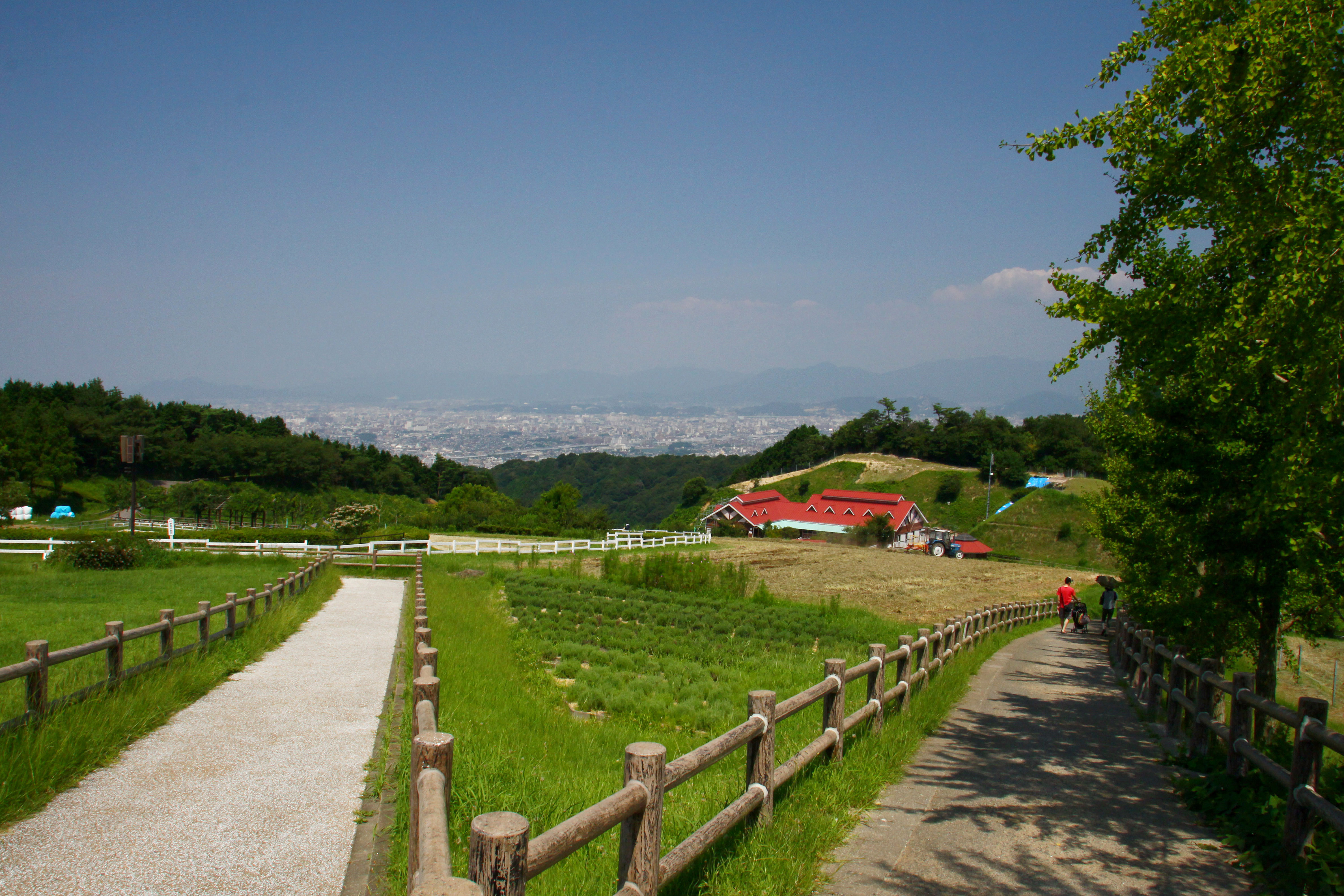 油山牧場(2009)の画像