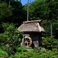 Image of 油山市民の森(2010)