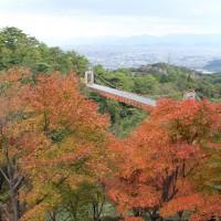 油山市民の森・吊り橋(2006)の画像
