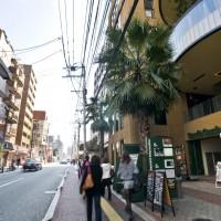 上人橋通り(2010)の画像