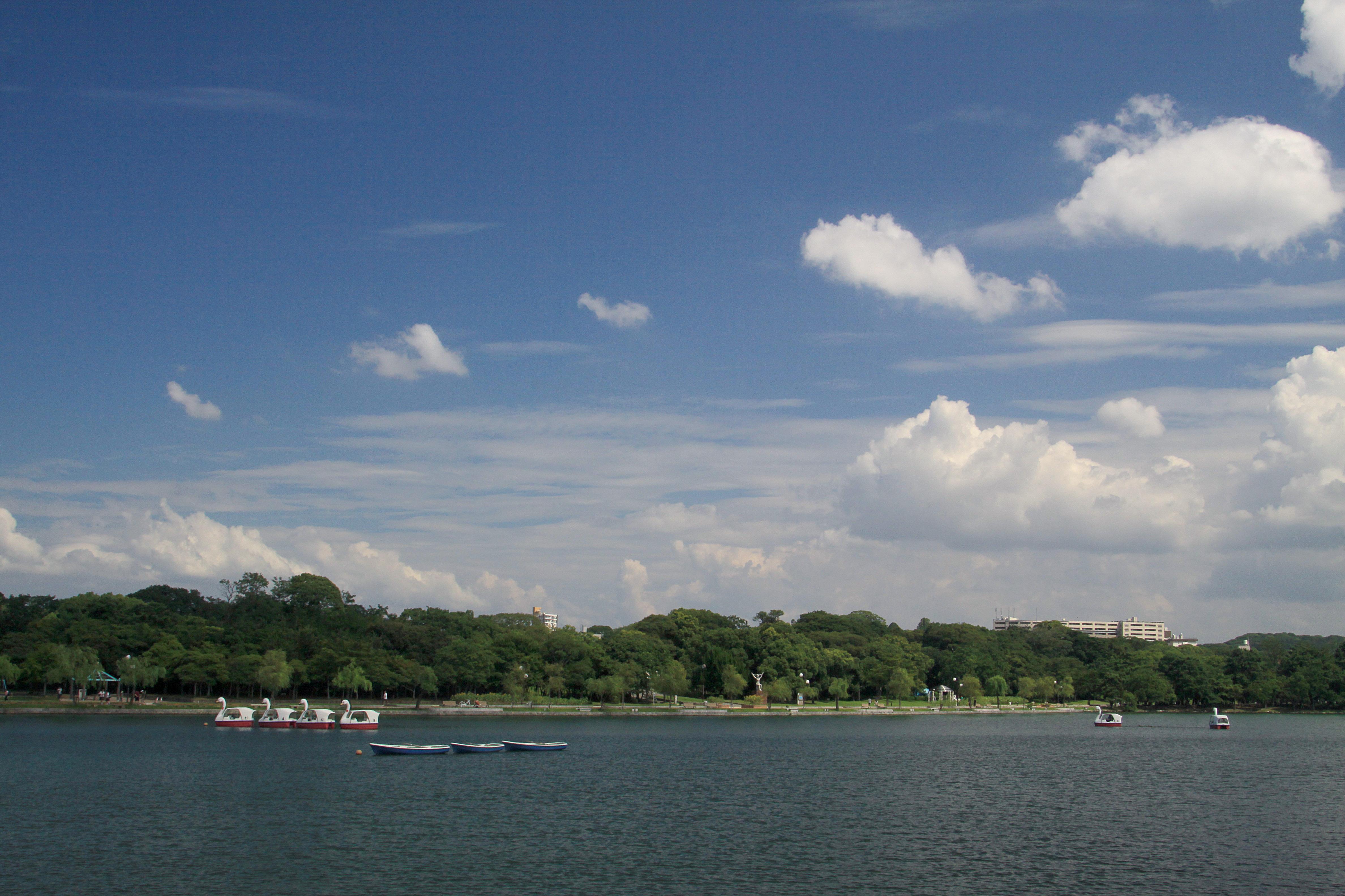 ボート遊びも楽しい大濠公園(2009)の画像