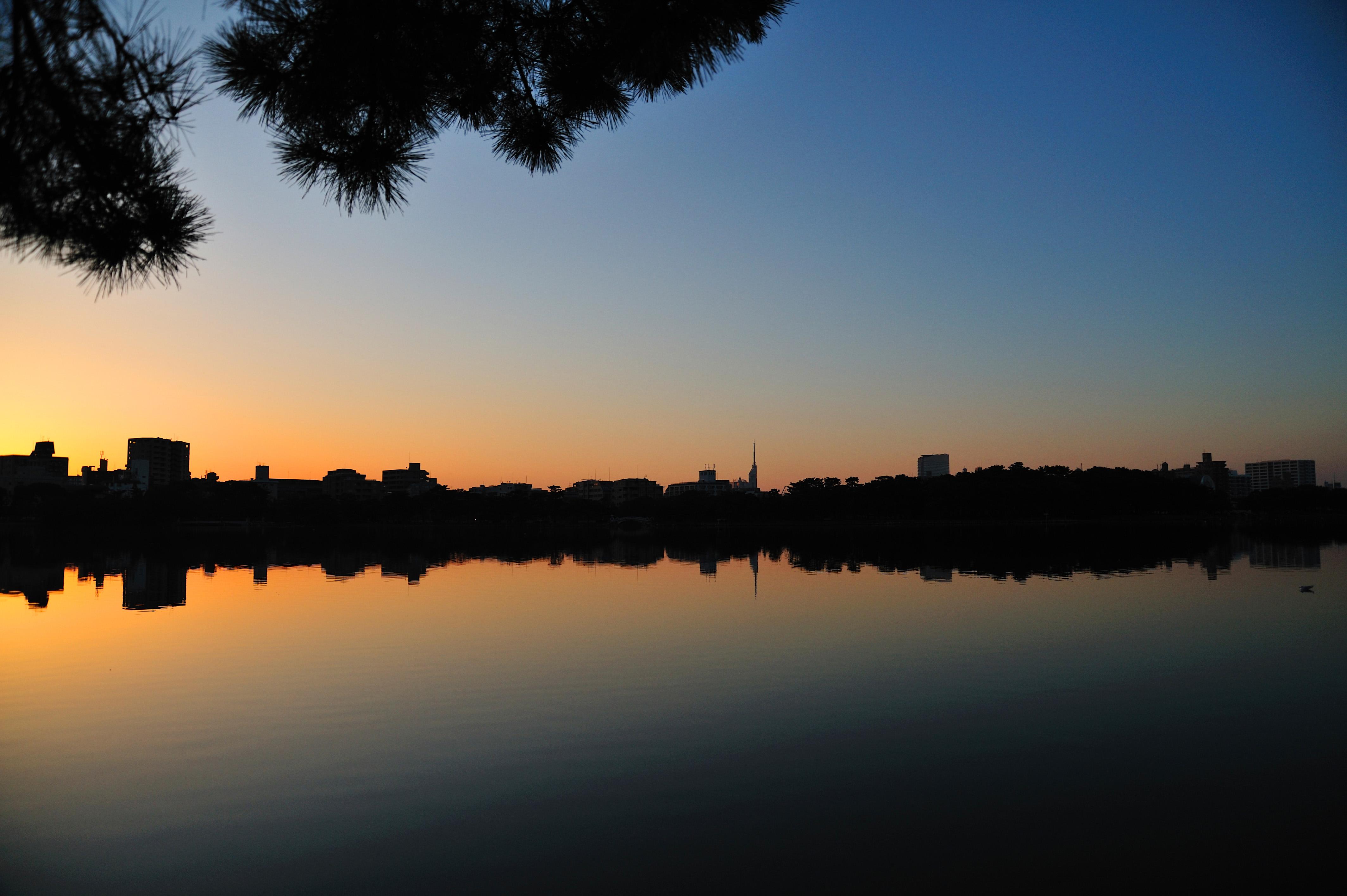 大濠公園夕景(2009)の画像