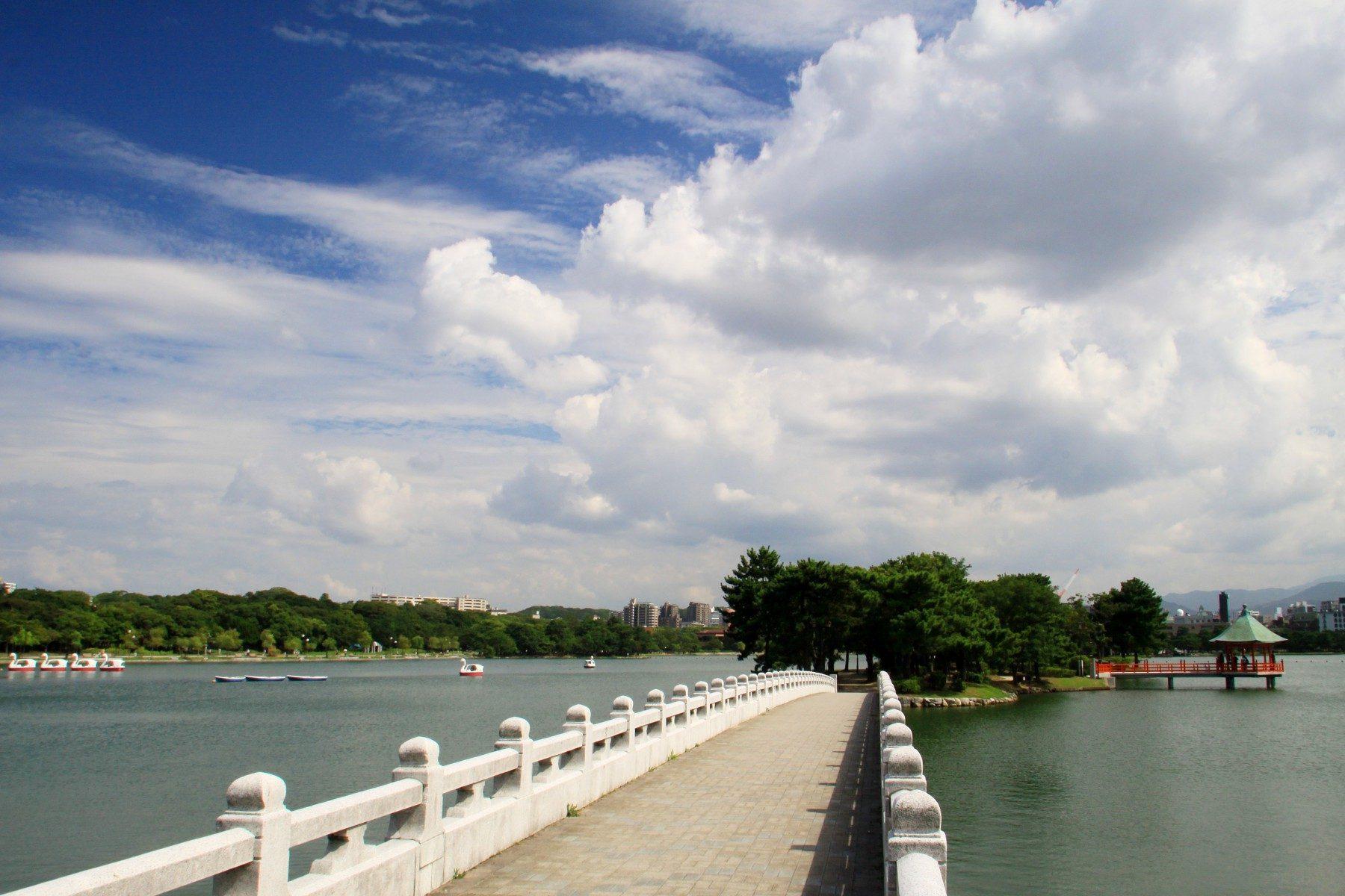 大濠公園(2009)の画像