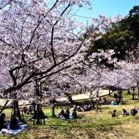 西公園(2009)の画像