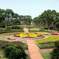 植物園大花壇(2009)の画像