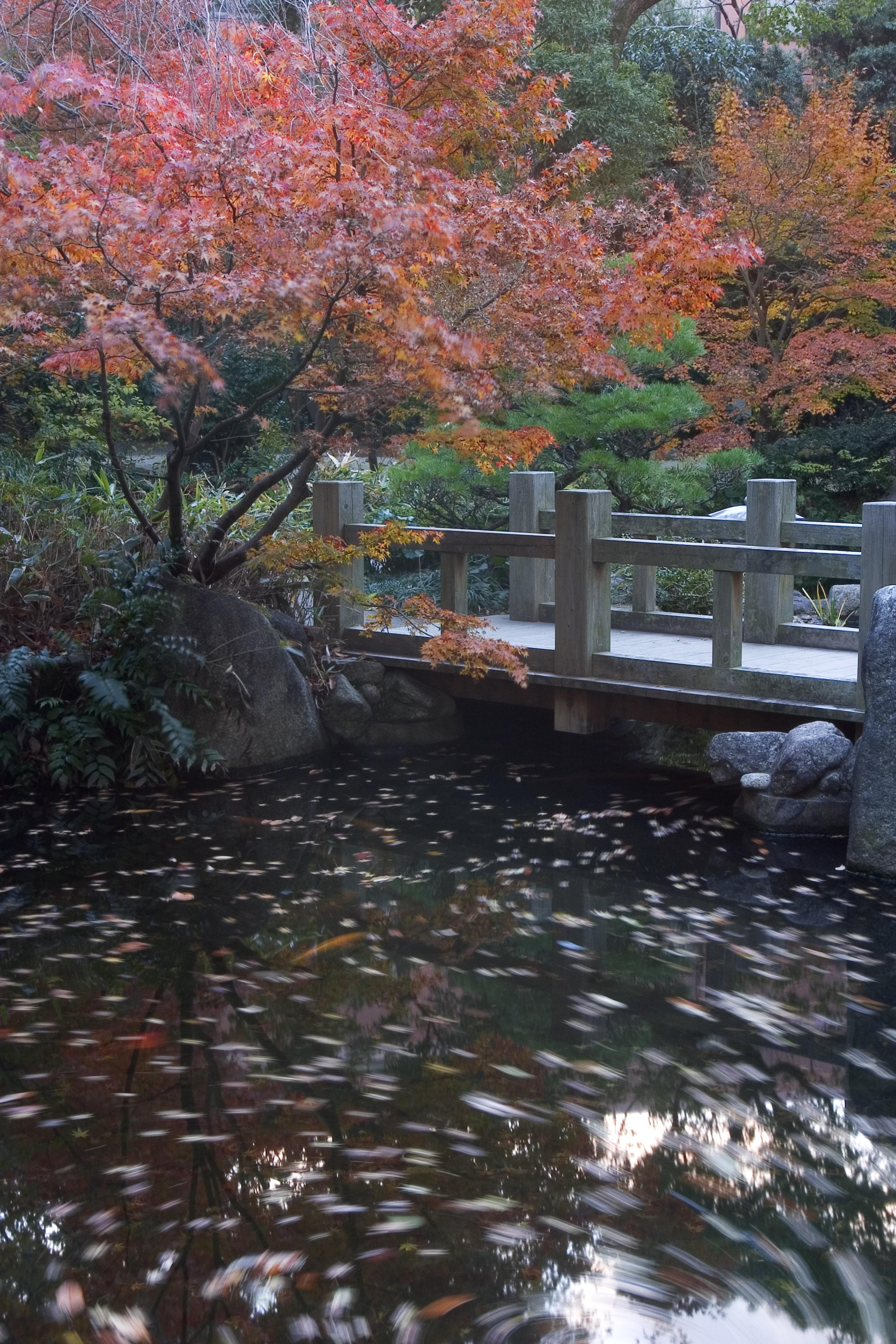 楽水園(2005)の画像