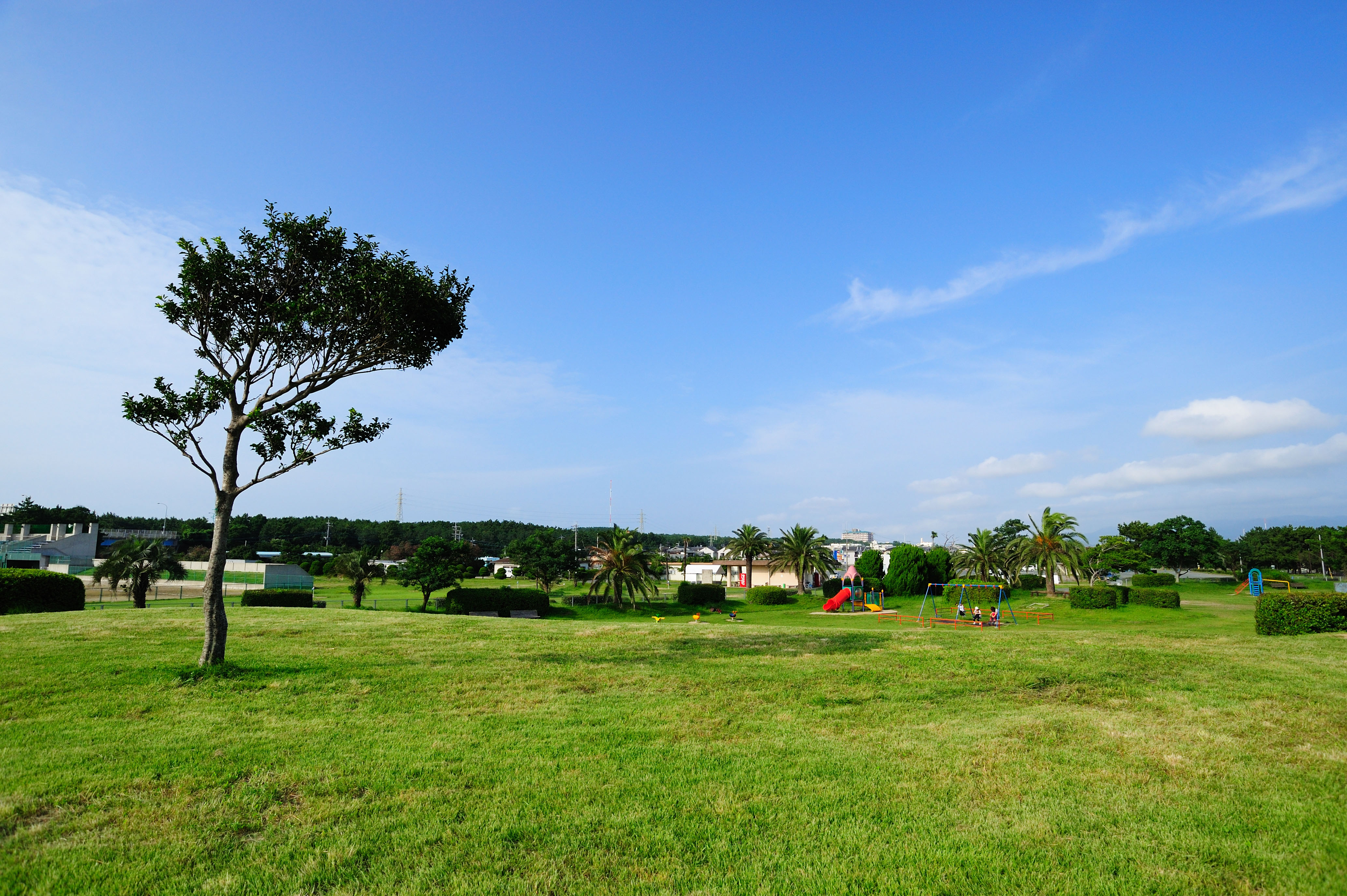 雁ノ巣・児童遊戯広場(2009)の画像