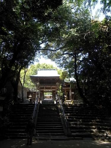 ... 一覧ページ 志賀海神社(2009