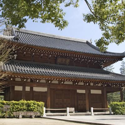 承天寺(2008)の画像