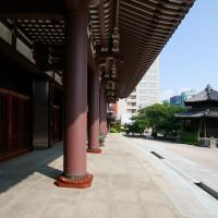 東長寺(2009)の画像