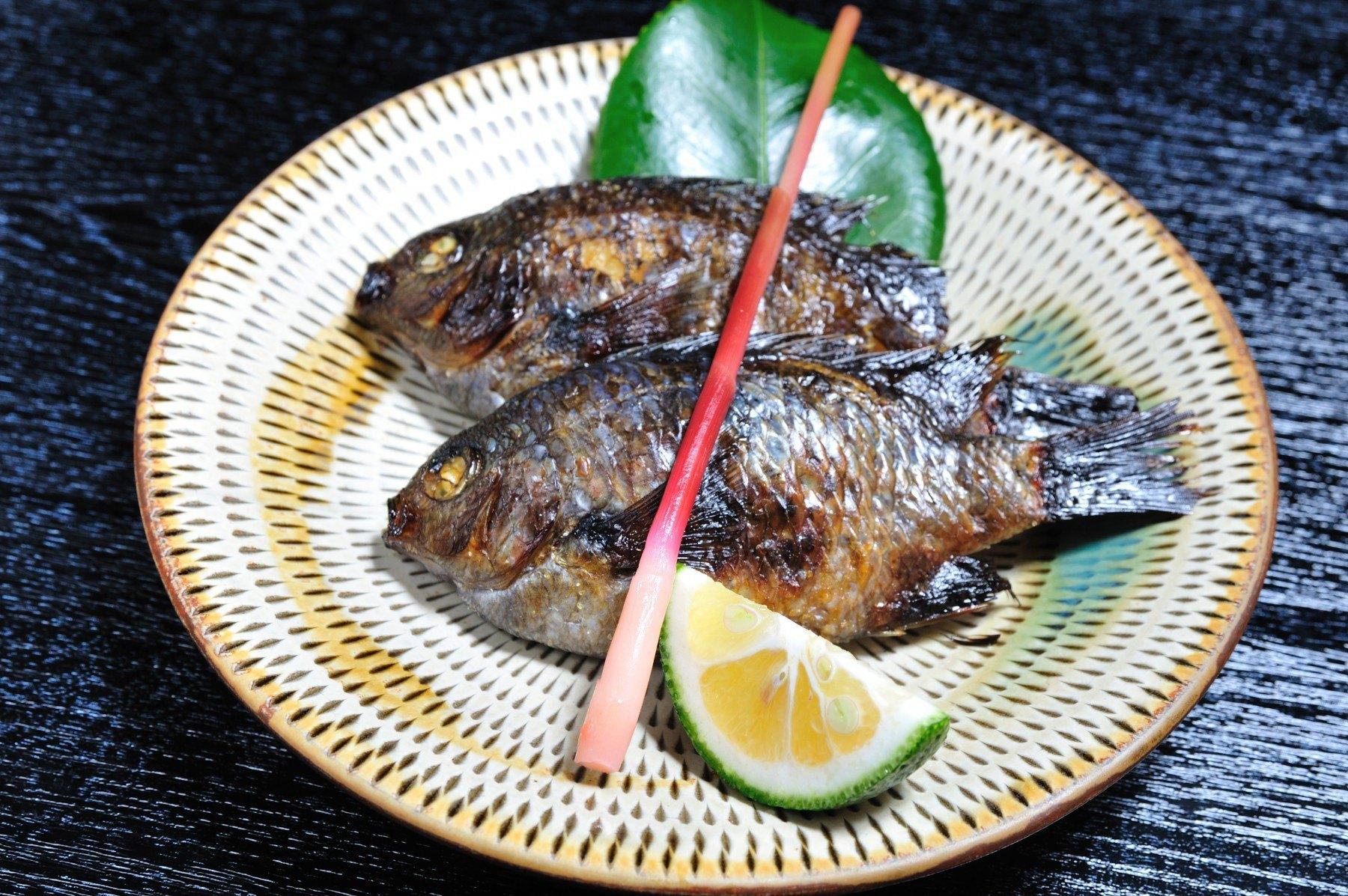 鲷鱼烧烤(2009)图片