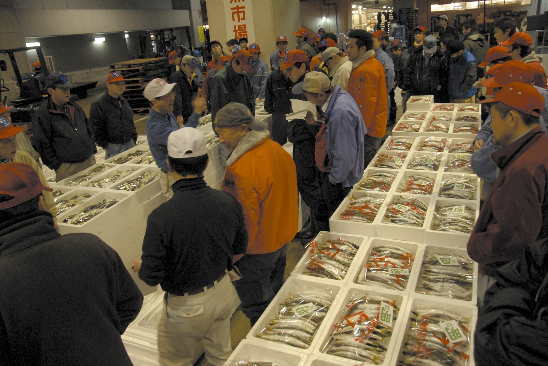 Image of Chuo Wholesale Fish Market(2006)