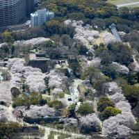 福岡城跡(2009)の画像