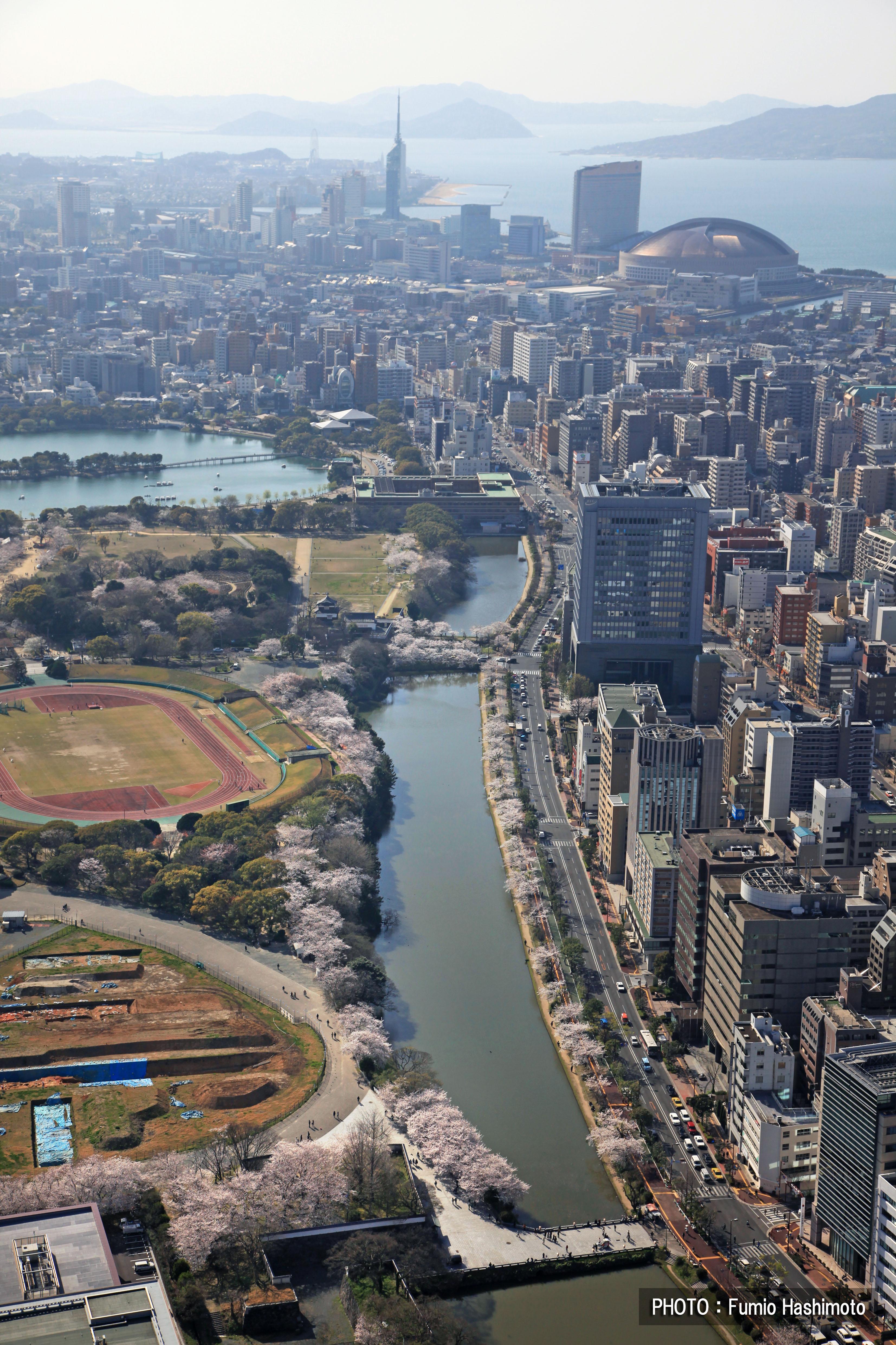 舞鶴公園・大濠公園(2009)の画像