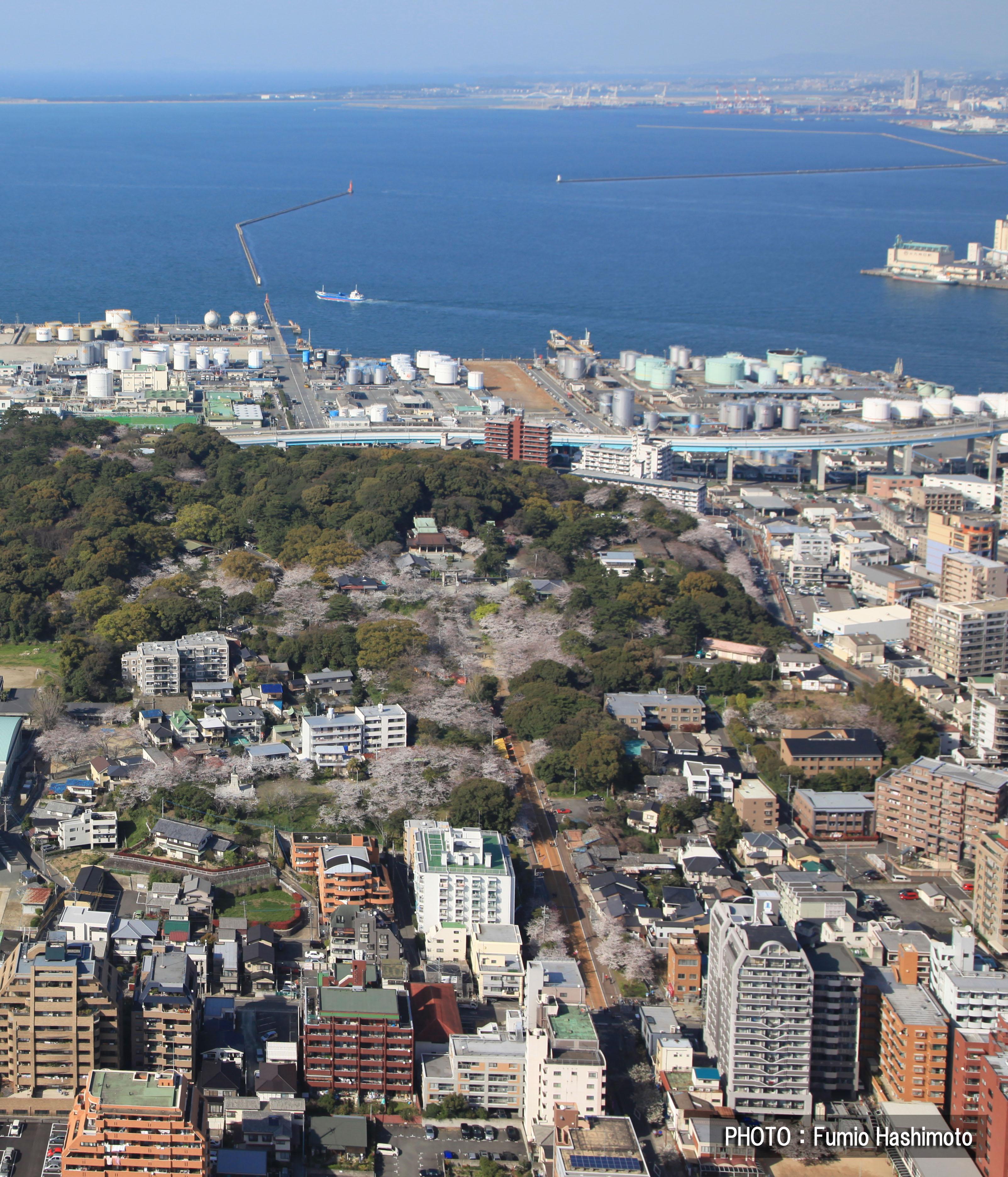 西公園上空(2009)の画像