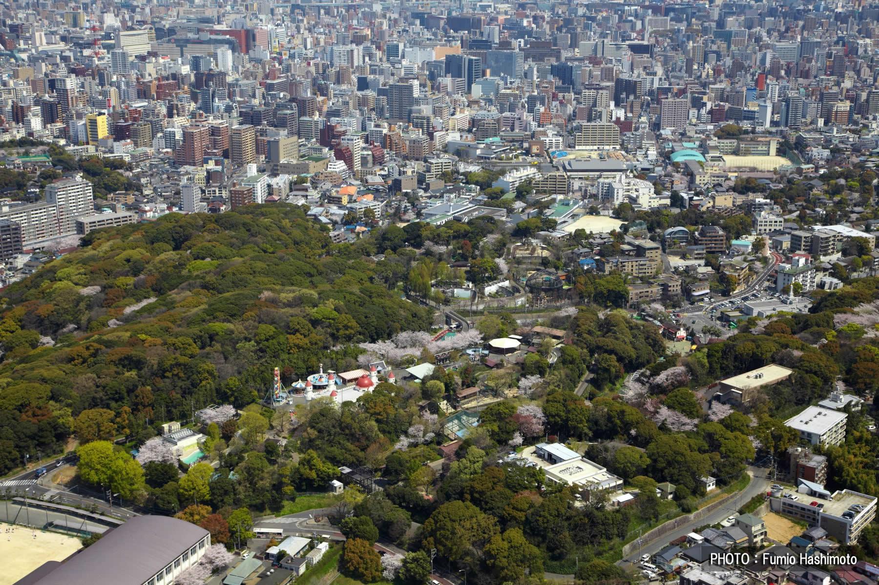후쿠오카시 동‧식물원(2009)의 이미지