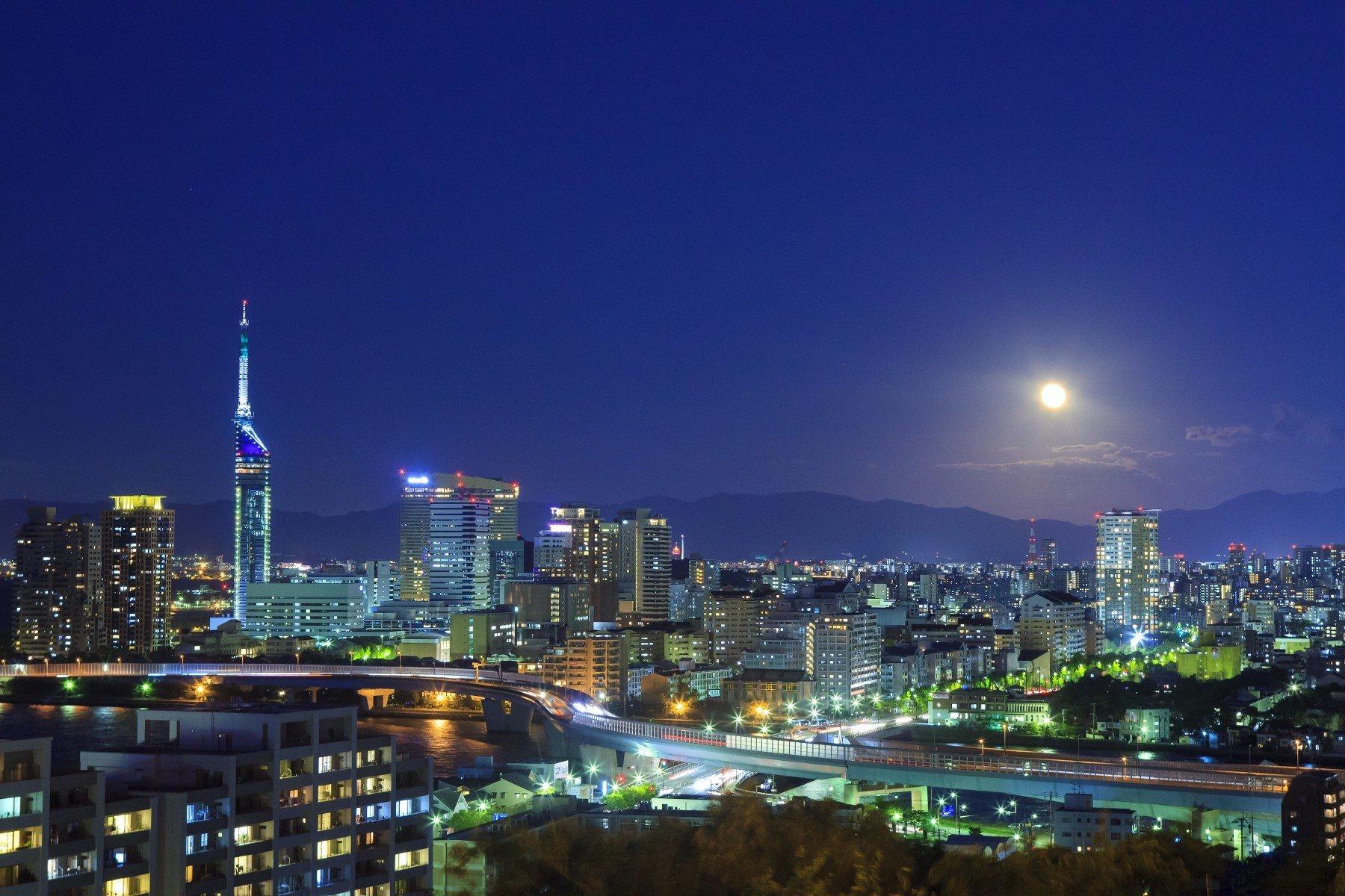 愛宕山から見た百道の夜景(2012)の画像