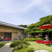 松風園(2011)の画像