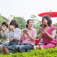 松風園(2013)の画像