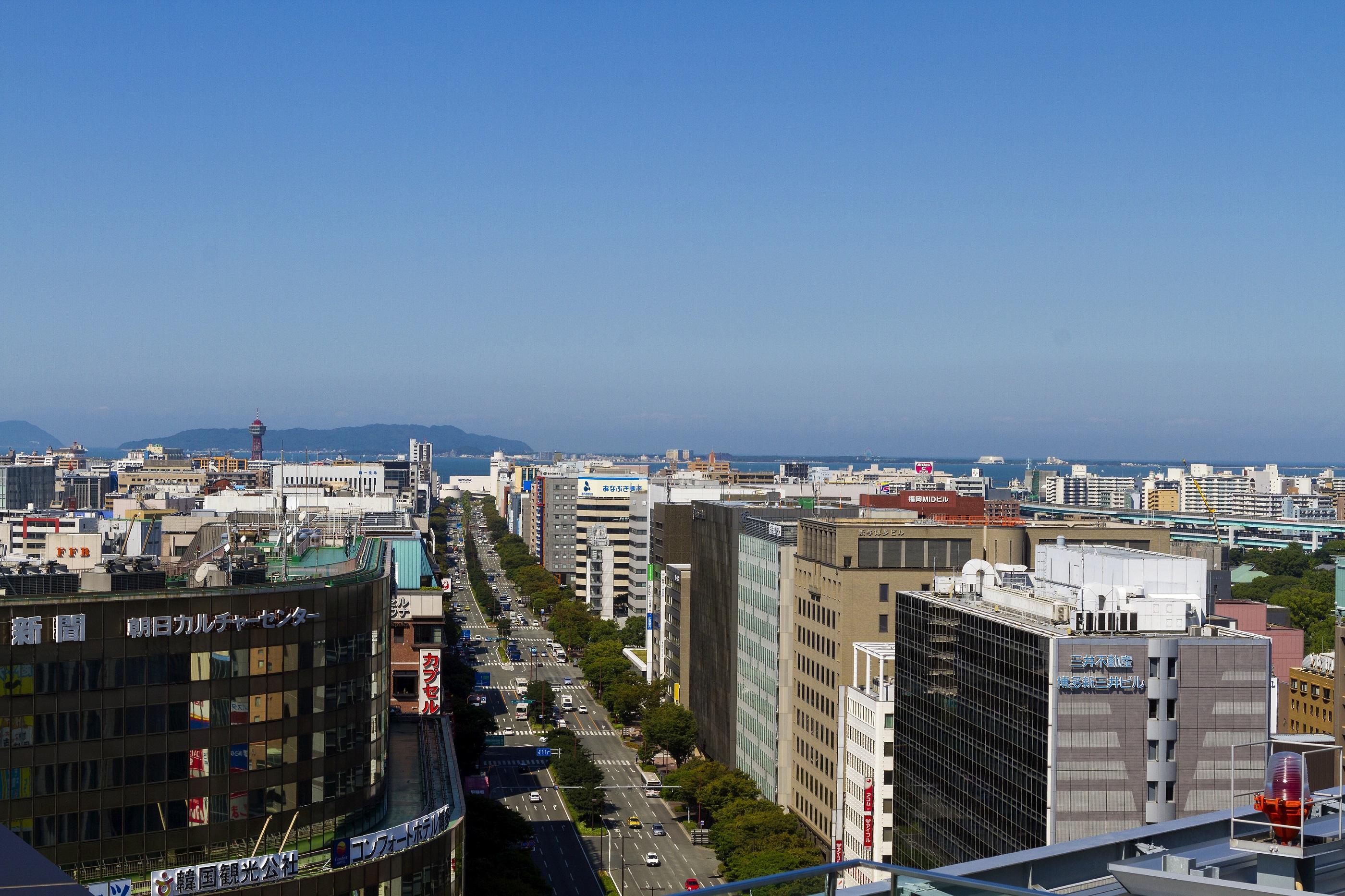 大博通り(2014)の画像