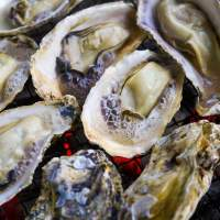 Image of Karatomari Ebisu Oysters(2016)