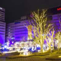 Image of 警固公園のクリスマスイルミネーション(2014)