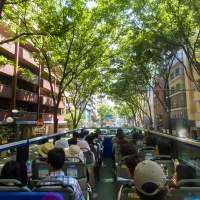 オープントップバス(2015)の画像