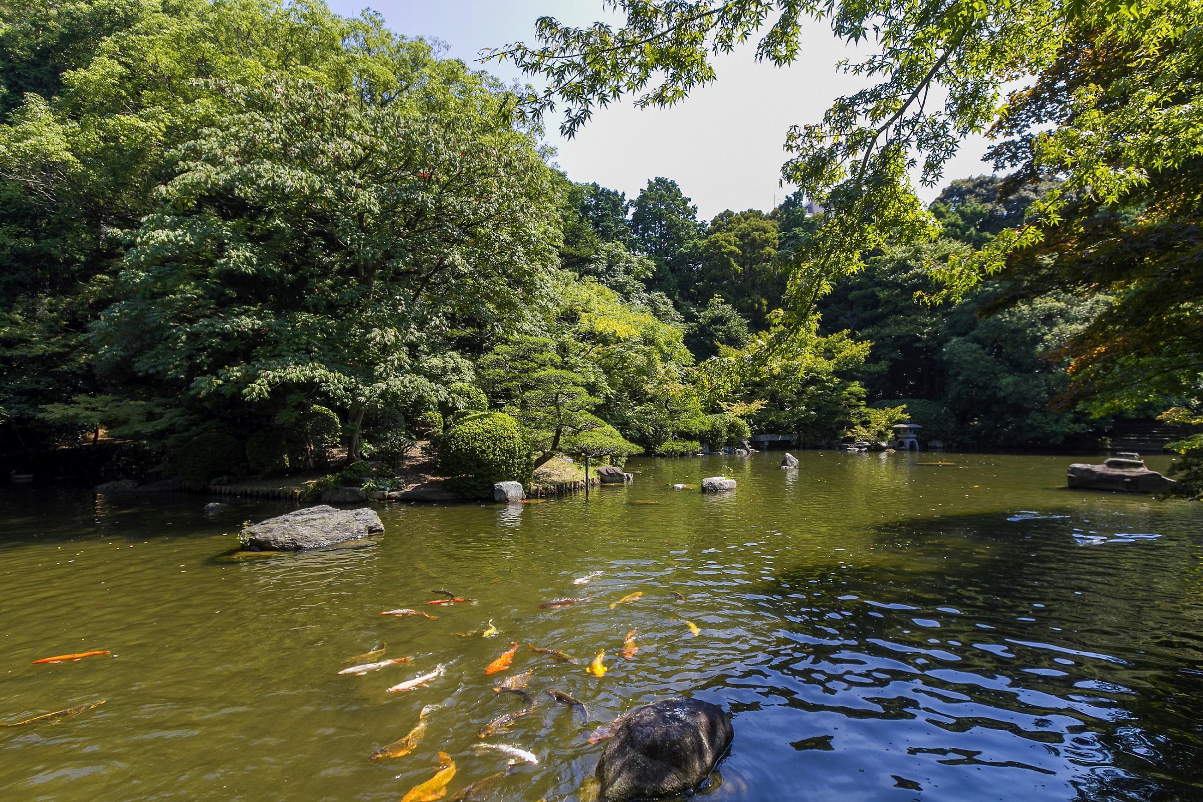 友泉亭公園(2014)の画像