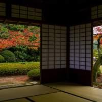 松風園(2014)の画像