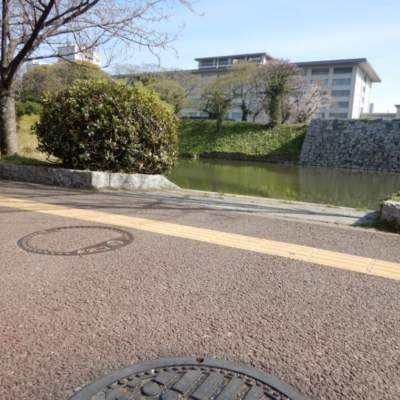 Image of FUKU51 MANHOLE(Maizuru Park)(2019)