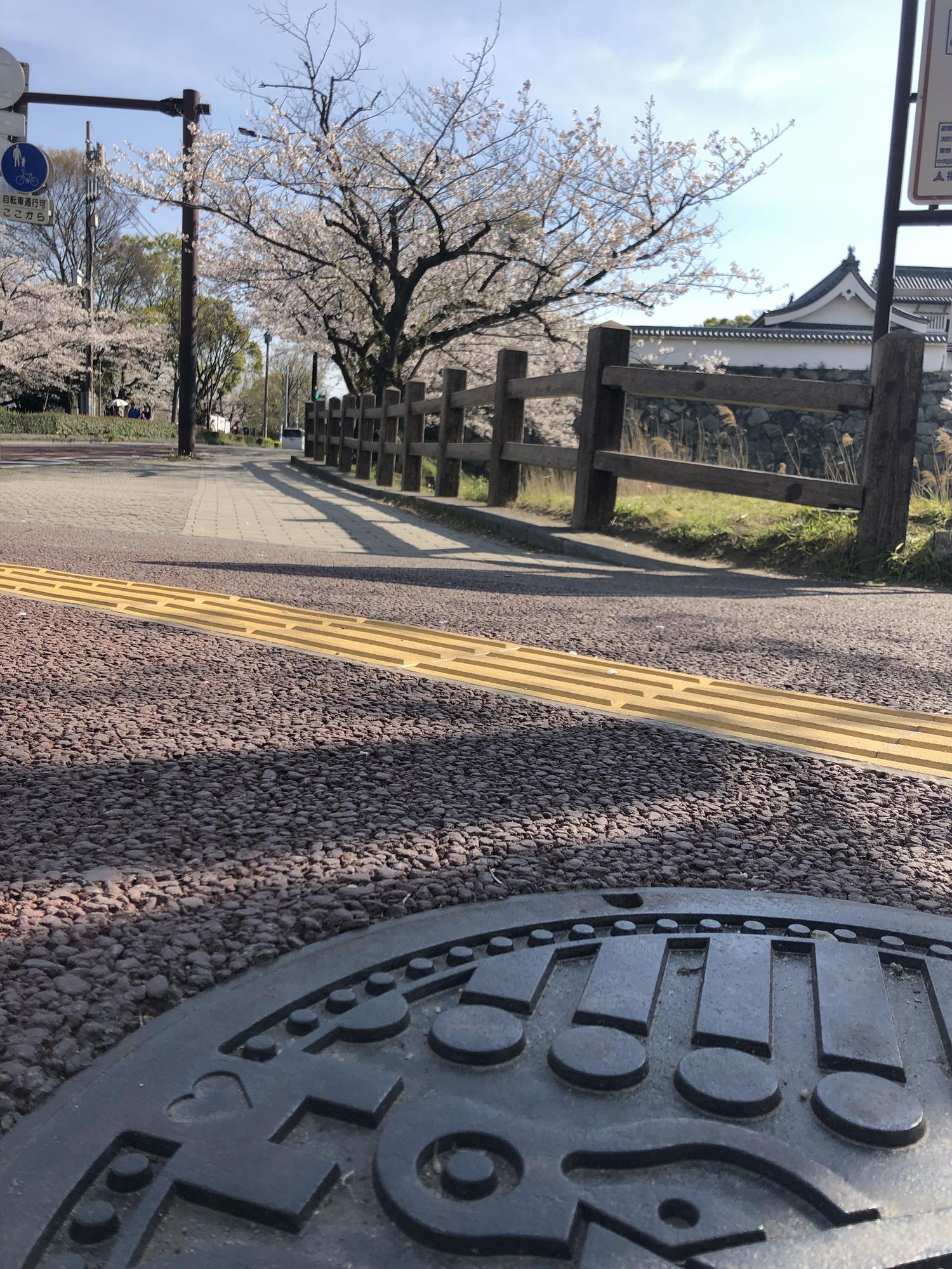 FUKU51 MANHOLE(フクコイマンホール)舞鶴公園の堀端(2019)の画像