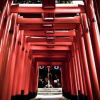 櫛田神社(2019)の画像